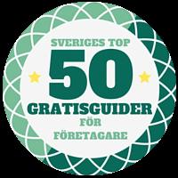 Sveriges bästa gratisguider för företagare 2016